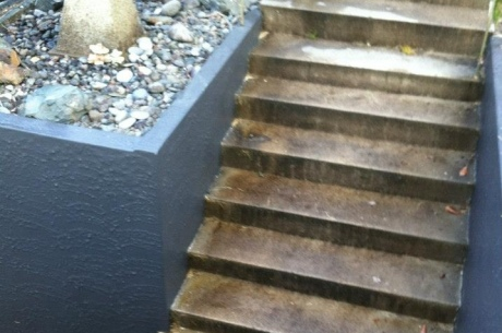 Chemical Cleaning Steps (Before)